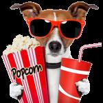 kids charades movies